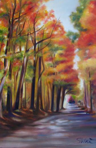 Bloomington Autumn