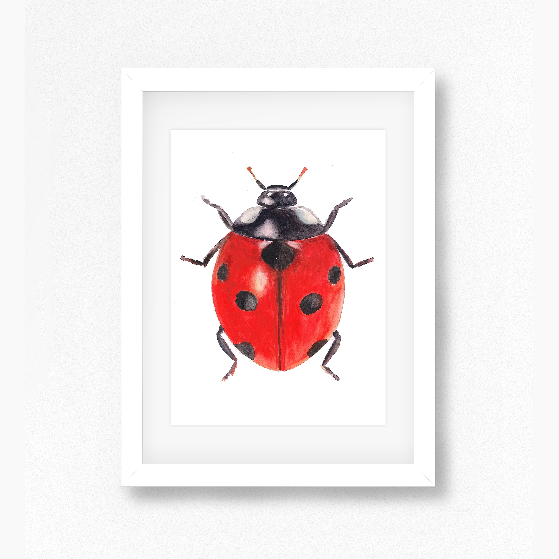 Ladybug White Frame – Sarah E. Wain