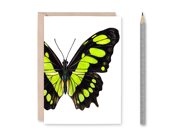 Malachite Butterfly Blank Greeting Card